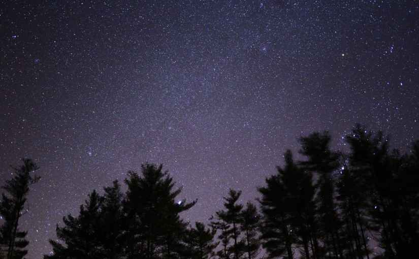 True Wilderness Freedom: Sleeping Under the Stars