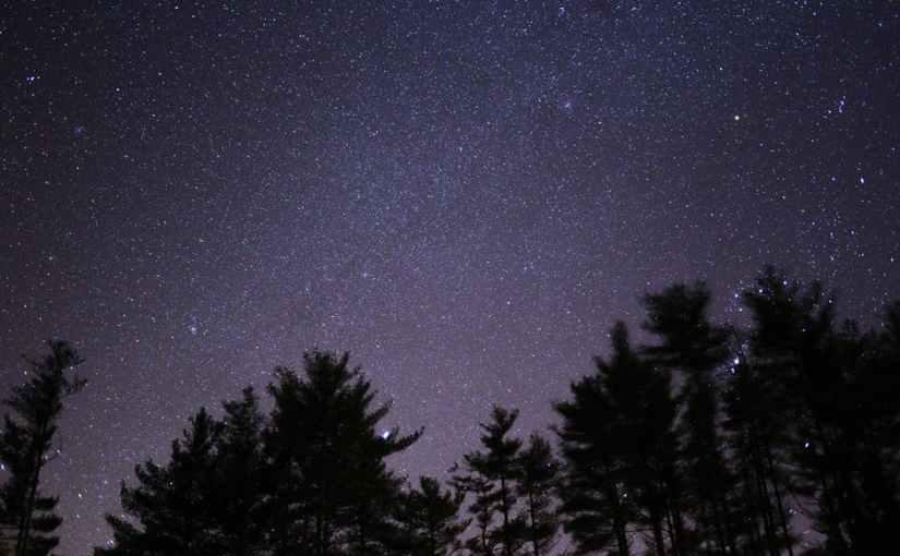 True Wilderness Freedom: Sleeping Under theStars